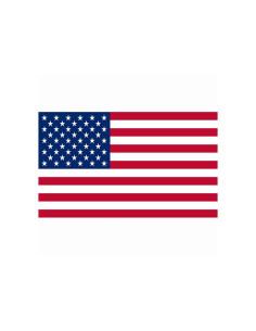 Bandiera USA Stati Uniti d'America
