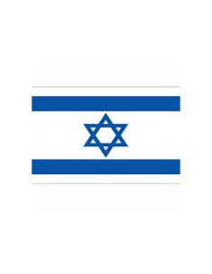 Bandiera Israele stella di Davide